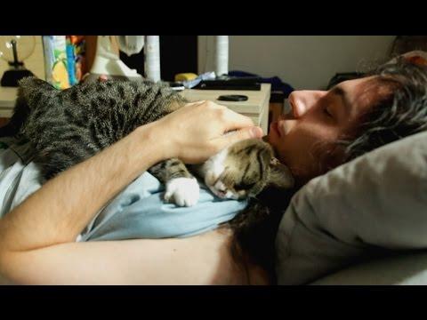 A Men and His Cat (Cute) - 毎朝起こしに来るネコの日課とは