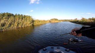 Ловля щуки на малой реке осенью Рыбалка на щуку на спиннинг 2019