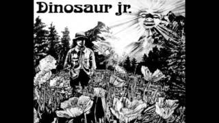 Watch Dinosaur Jr Does It Float video