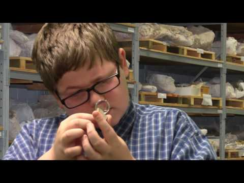 The Life of Jack Horner - Student Video Project