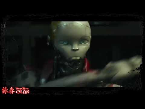 "Wing Chun In ""Kung Fu Robot"" Movie / Вин Чун в фильме ""Кунг Фу Робот"""