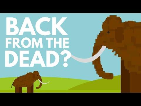 Should We Bring Extinct Animals Back To Life?