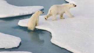DOKU 2016 - Traumziel Arktis, Kreuzfahrt ins Nichts – Mit dem Eisbrecher zum Rand der Welt