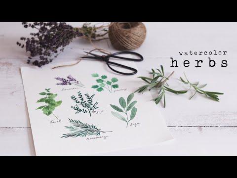How To Paint Watercolor Herbs | Simple Beginner Tutorial thumbnail
