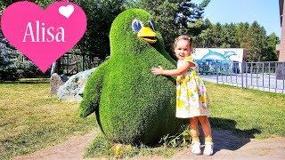 Алиса гуляет НОВОСИБИРСКИЙ ЗООПАРК Детский канал Little baby Алиса