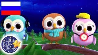 детские песенки | Мудрая старая сова | мультфильмы для детей | Литл Бэйби Бам | детские песни