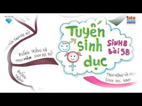 Bài giảng SGK  Lớp 8  Sinh Học  Bài 58  Tuyến sinh dục STNHD