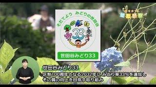 【世田谷区】区制100周年(2032年)みどり33をめざして!