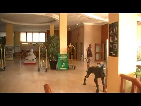 Estival Park Hotel Number 2 Reception La Pineda