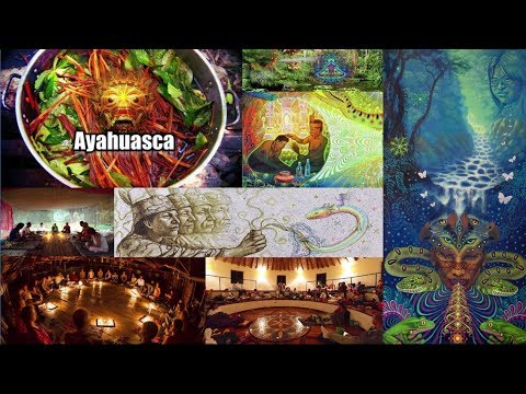 Andrew Bartzis - Drugs in Society Pt3 - Sacred Plants, Ayahuasca, Tobacco, Shamanism, Equity