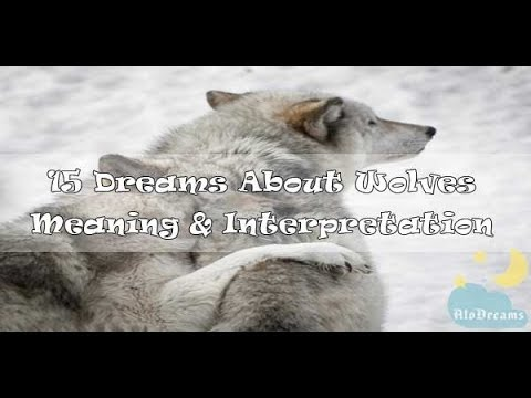#80 Dreams About Wolves - Meaning And Interpretation