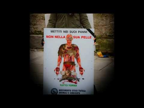 Pellicceria Annabella, la moda assassina made in Pavia