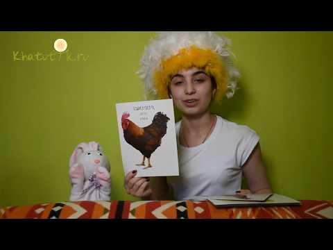 Урок 3. Изучаем домашних животных на армянском языке