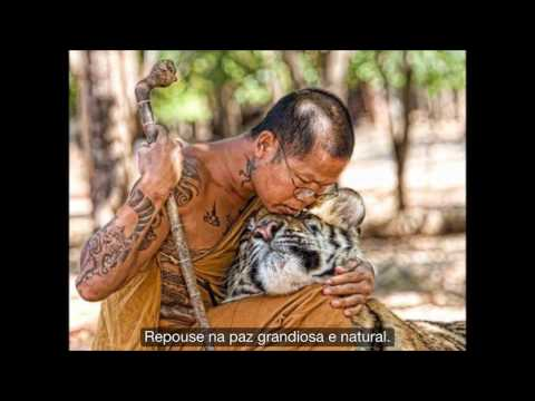 Repouse na paz grandiosa e natural por Sogyal Rinpoche