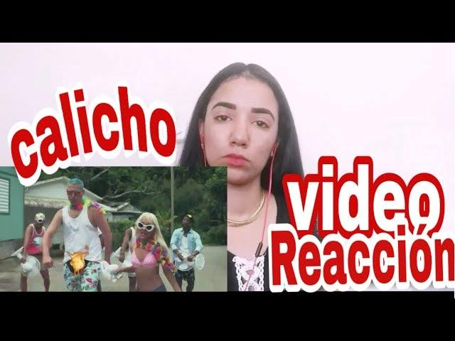 Video reacción - calicho - calor en el bicho  -  jamsha ft barbie rican - melissa sanchez