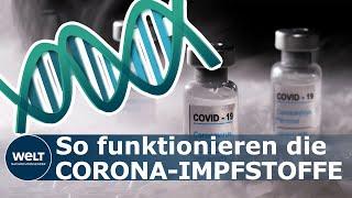 Einige aktuelle corona-impfstoffkandidaten basieren auf der mrna-technologie. was bedeutet das?die sogenannte boten-rna (engl: messenger ribonucleic acid, mr...