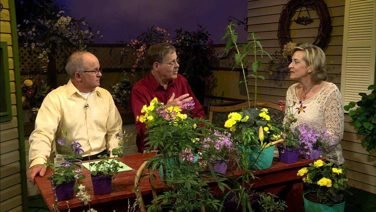 Great Gardening - Back to Nature: Native Plant Restoration - YouTube