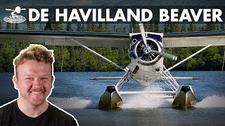 How a Beaver is so Powerful 🦔 De Havilland DHC-2 Beaver Bush Plane