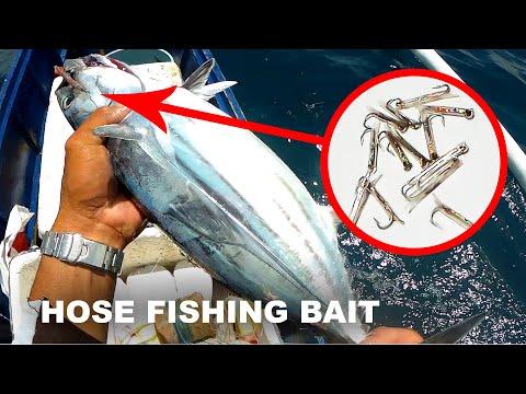 Skipjack Tuna Fishing Using Dextrose Hose As Fishing Lure | Traditional Fishing