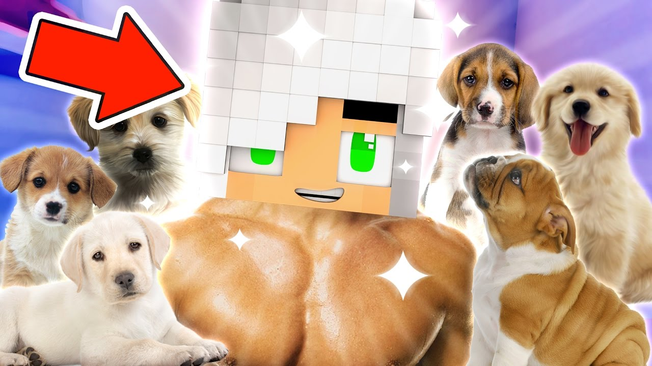 Download Going Viral!   MyStreet Lover's Lane [S3 Ep.20 Minecraft Roleplay]