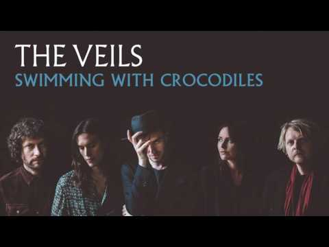 The Veils -  Swimming With Crocodiles (Audio)