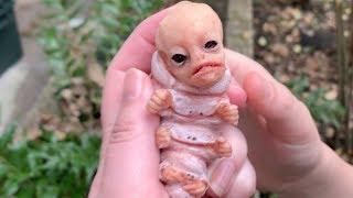 We found a weİrd alien caterpillar creature in our yard! Is it a baby mothman?