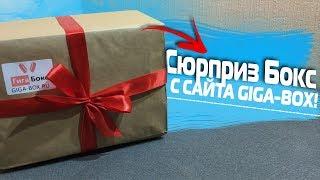 Распаковка Сюрприз Бокс с сайта Giga-Box!