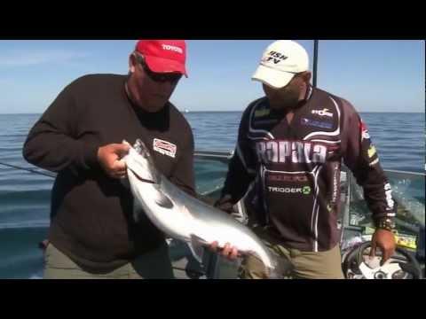 FISH TV Lake Ontario Salmon