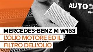 Manutenzione Mercedes ML W164 - video guida