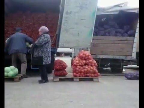 Продажа грибов вдоль трассы - YouTube