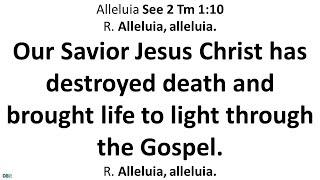 21 November 2020 Catнolic Mass Daily Bible Reading