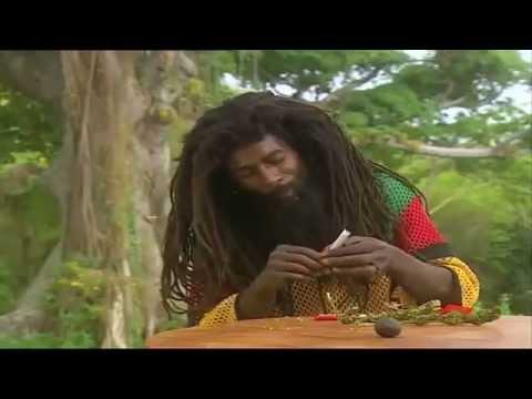 Jamaica Ganja - Ganjaman