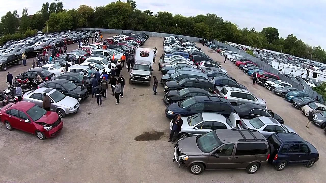 Stark Auto Sales - AUTO AUCTION EXPANDING News Segment - YouTube