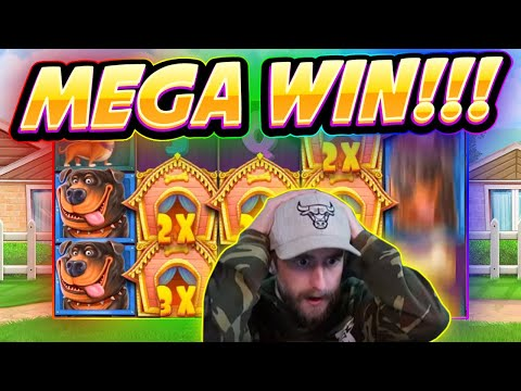 MEGA WIN!! Dog House BIG WIN - Casino Games From Casinodaddy Live Stream