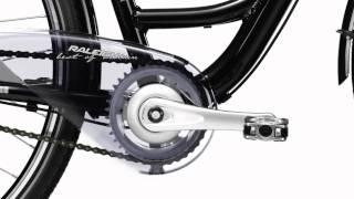 Cityrad Raleigh Unico DLX Premium (2011) - www.velo-group.de