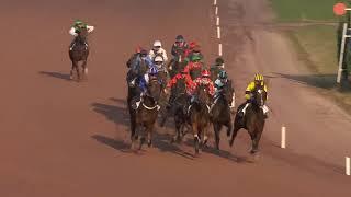 Vidéo de la course PMU PRIX DU CONSEIL DEPARTEMENTAL DE SEINE-MARNE