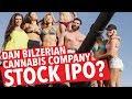Dan Bilzerian Cannabis Co. Stock IPO?