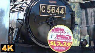 大井川鉄道 2019年3月9日~10日 SLフェスタin千頭/Oigawa railway,SL fest. in Senzu station.