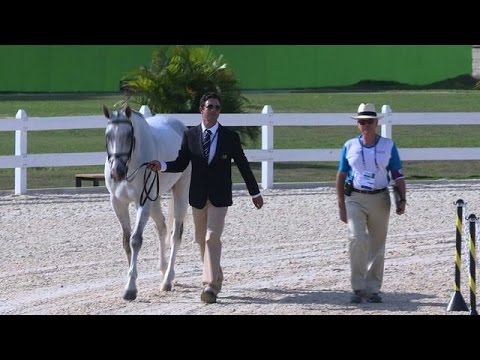 Olympics: Rio holds equestrian tests amid disease outbreak