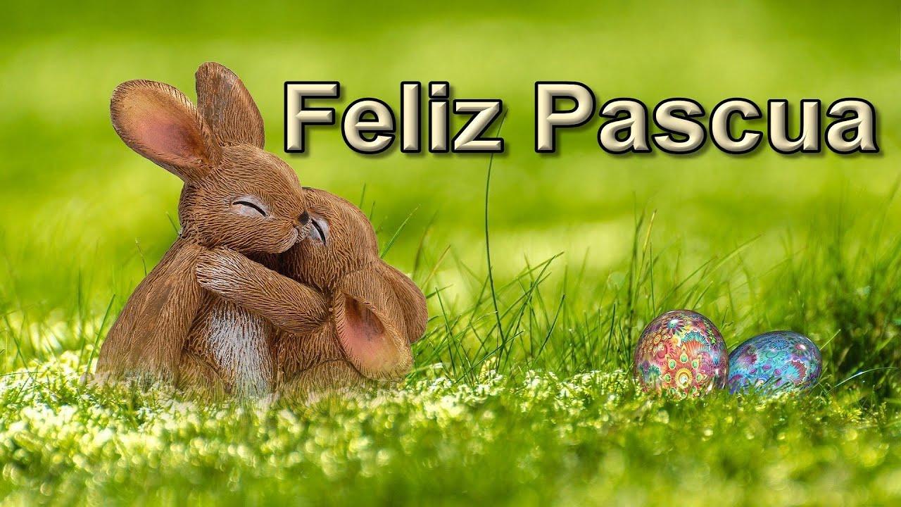 conejos Saludos de Pascuas para WhatsApp Felices Pascua