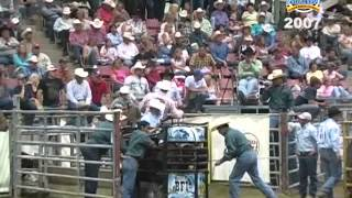 bfi team roping top 5 2007