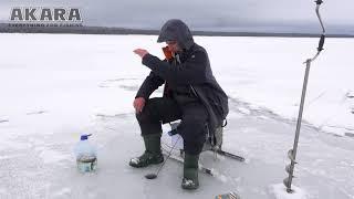 зимняя рыбалка на окуня. Как подобрать блесны, чтобы не остаться без рыбы