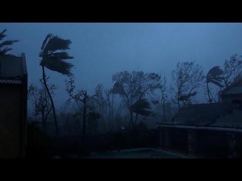 Hurricane Matthew bears