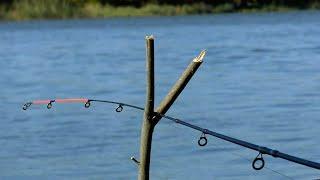 Осенняя вобла Рыбалка в Астрахани в октябре 2020 Рыбалка на жмых и червя