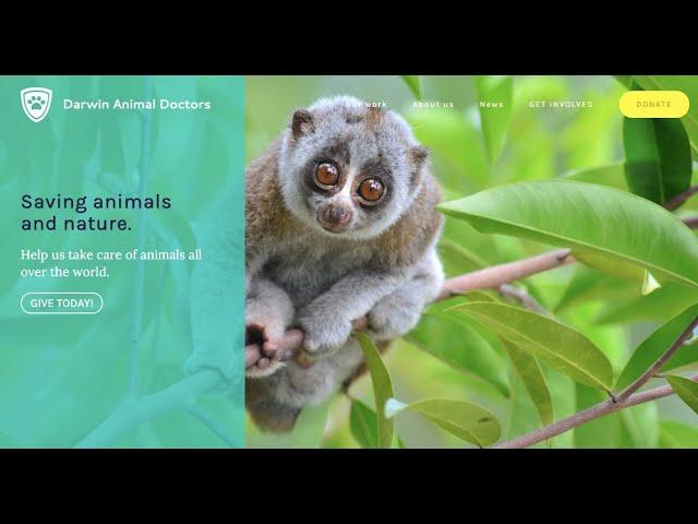 DARWIN ANIMAL DOCTORS - i4ANIMAL