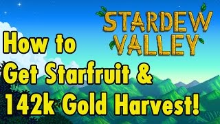 How to get Starfruit Seeds and 142k Harvest - Stardew Valley - xBeauGaming