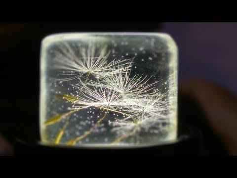 Żywica epoksydowa - Dandelion in epoxy resin  Dmuchawiec w żywicy epoksydowej - kostka lodu
