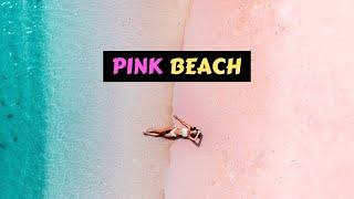 Gambar cover Pink Beach   Motorbike Crash & Camera Was STOLEN!   Kuta & Ekas Lombok   Travel Vlog
