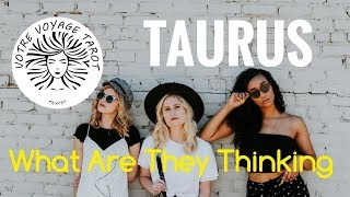 Taurus What Are They Thinking June 2018