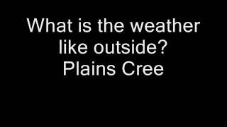 what is the weather like outside plains cree